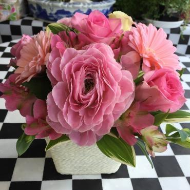 春の可愛い花たちで